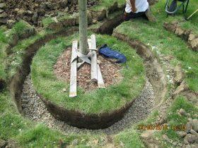 održavanje-vrta