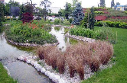 Detalj vegetacije na otočiću u jezeru poslovnog objekta Green Gold u Zagrebu