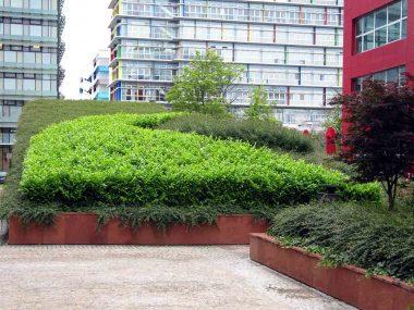 Krovni vrt i žardinjere sa nisko šišanim masivom grmova oko poslovnog objekta Green Gold u Zagrebu