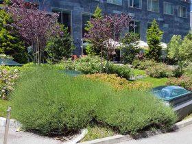 Po ukupnom dojmu, izuzetno reprezentativno krajobrazno uređenje okoliša hotela Hilton u Zagrebu