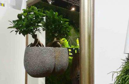 Herbadesign cvjetno ogledalo sa živom bonsai biljkom u tegli2