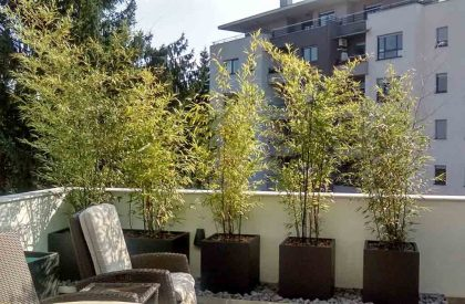 Termoizolirane, plastificirane metalne žardinjere na terasi u Zagrebu