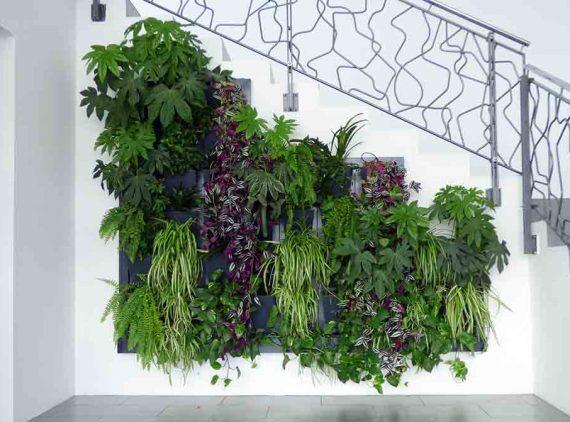 Vertikalni vrt Herbadesign kraj Samobora