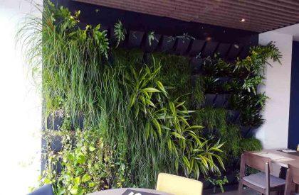 Vertikalni-zeleni-zidovi-Herbadesign-u-hotelu-Istra-na-Crvenom-otoku-Rovinj.