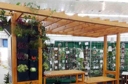 Vetrikalni vrt Herbadesign na vrtnoj sjenici Drvno tehnološkog odsjeka Šum. fakulteta u Zagrebu