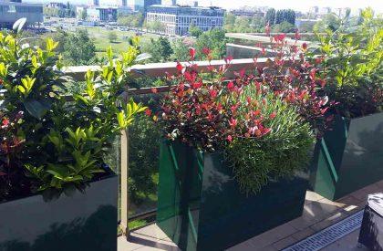 Žardinjere metalne, plastificirane, termoizolirane sa bogatim zelenilom na balkonu stambene zgrade